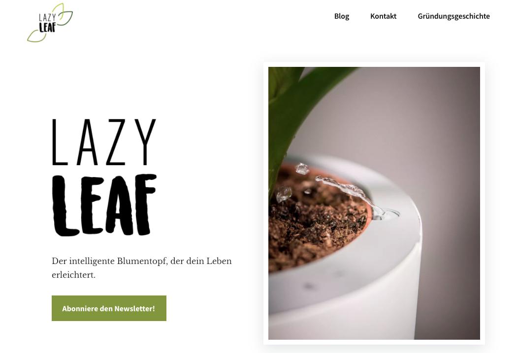 Screenshot LazyLeaf Homepage